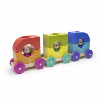 Tegu magnetischer Holzzug mehrfarbig