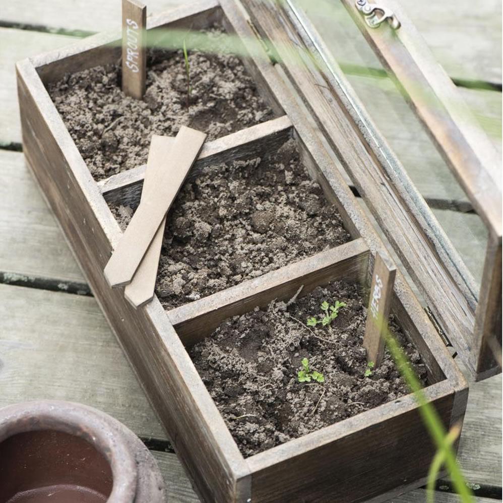 Holz Kiste Rustikal Glasdeckel
